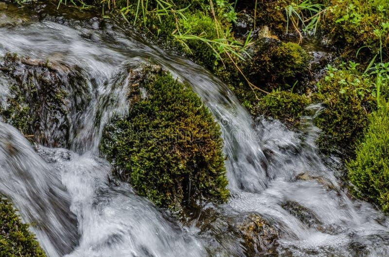 natura i czysta woda fotografia stock