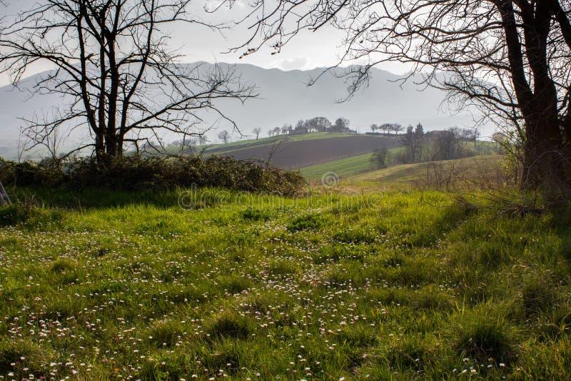 Natura in Italia centrale, belle viste immagine stock