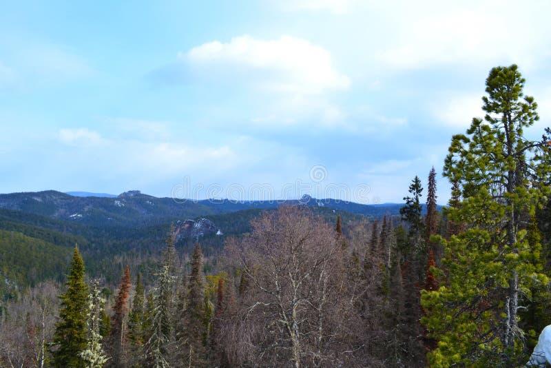 Natura Krasnoyarsk region 5 zdjęcie stock