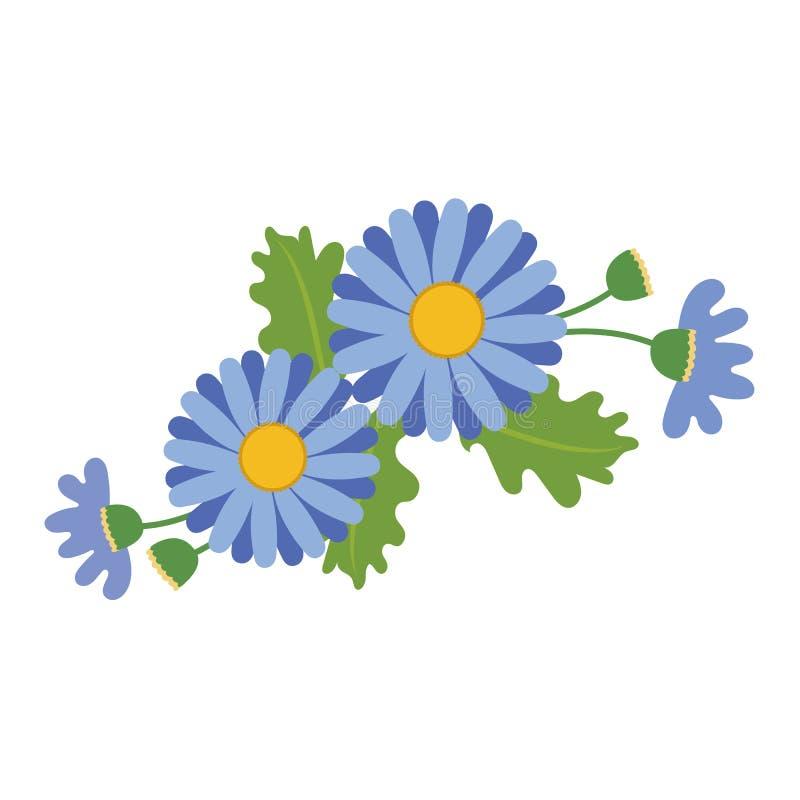 Natura kwiatu błękitna stokrotka ilustracji