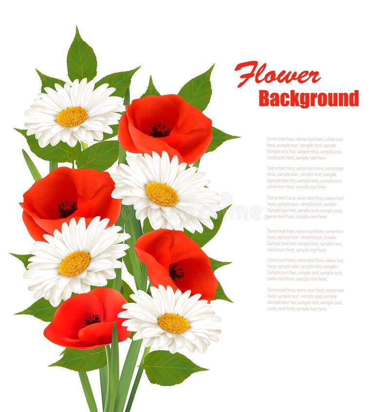 Natura kwiatu tło z czerwonymi maczkami i białymi stokrotkami ilustracja wektor