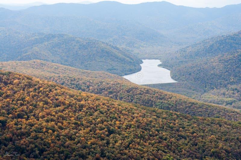 Natura, las, krajobraz, prywatność, tajga, lasowa farba fotografia stock