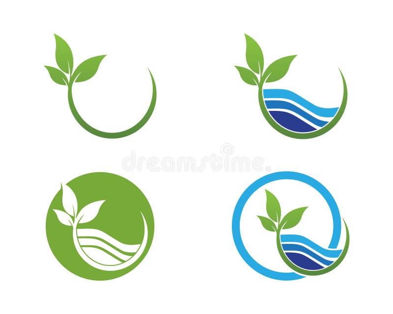 Natura liścia ikony lgoo wektoru szablon ilustracji