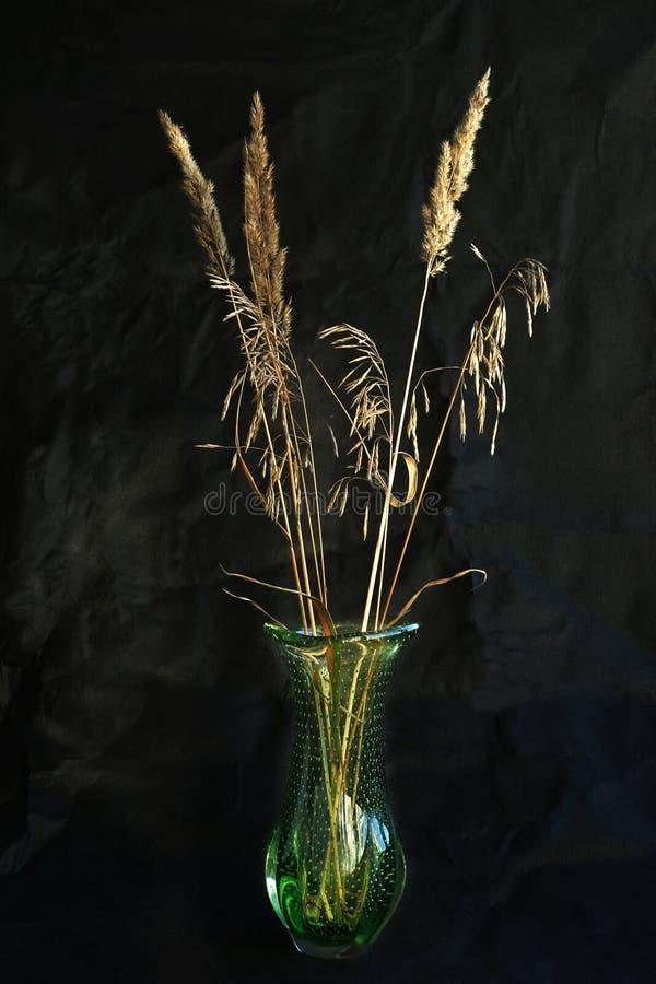 Download Natura morta immagine stock. Immagine di basamento, trasparente - 30829805