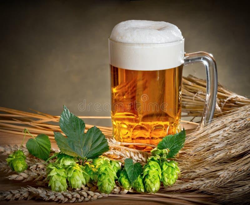 Natura morta con birra ed il luppolo fotografia stock libera da diritti