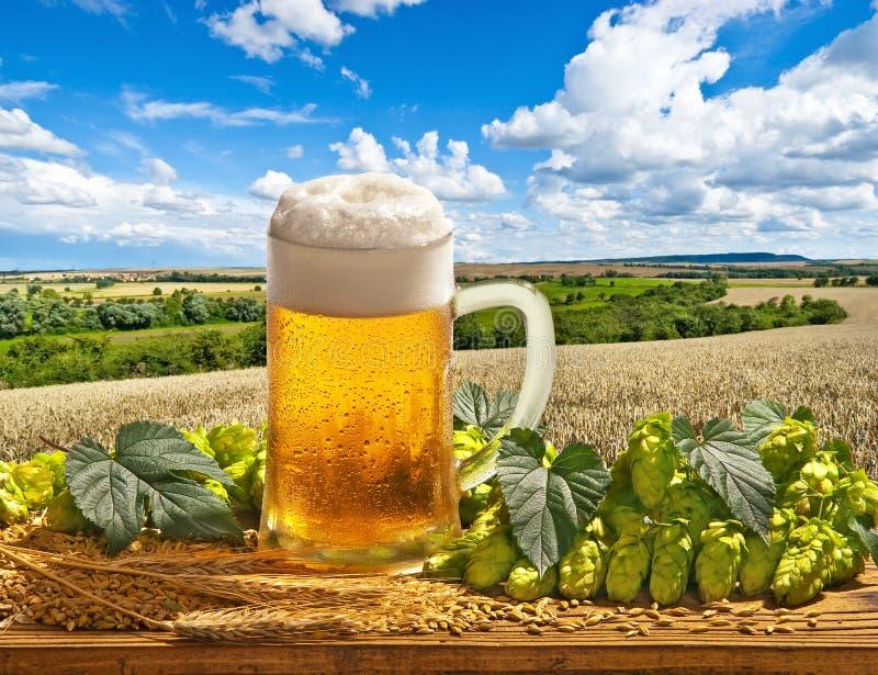 Natura morta con il vetro ed il luppolo di birra fotografia stock