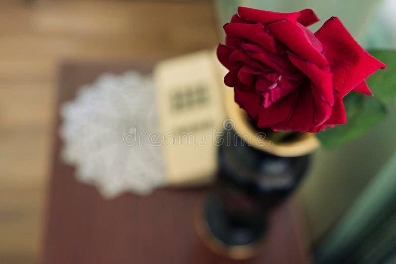 Natura morta con la rosa rossa immagini stock libere da diritti