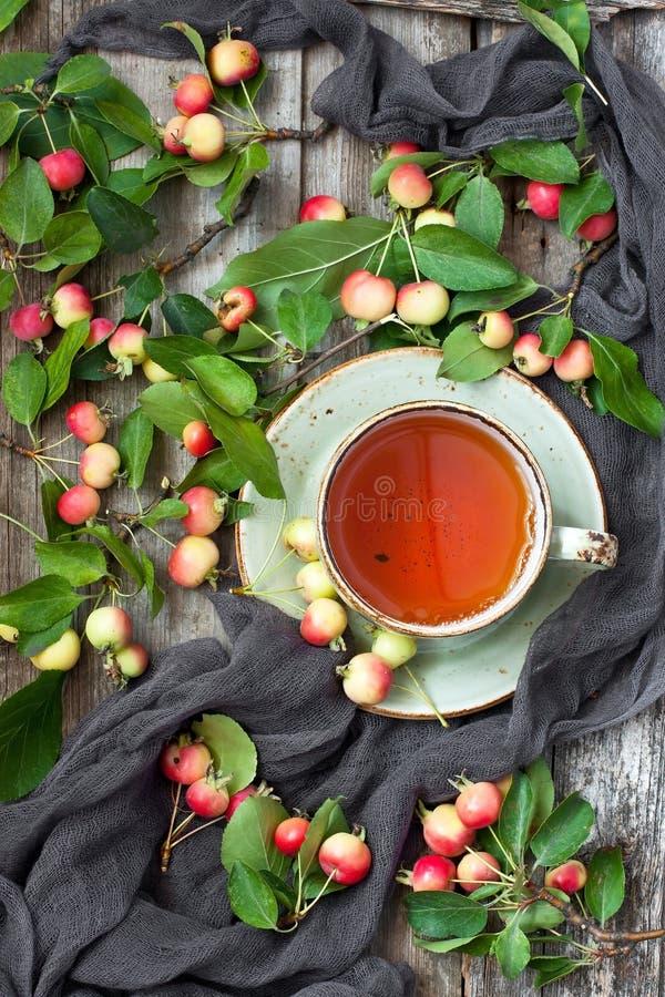 Natura morta con le mele variopinte e la tazza di tè fotografie stock libere da diritti