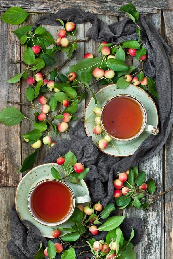 Natura morta con le mele variopinte e la tazza di tè immagini stock libere da diritti