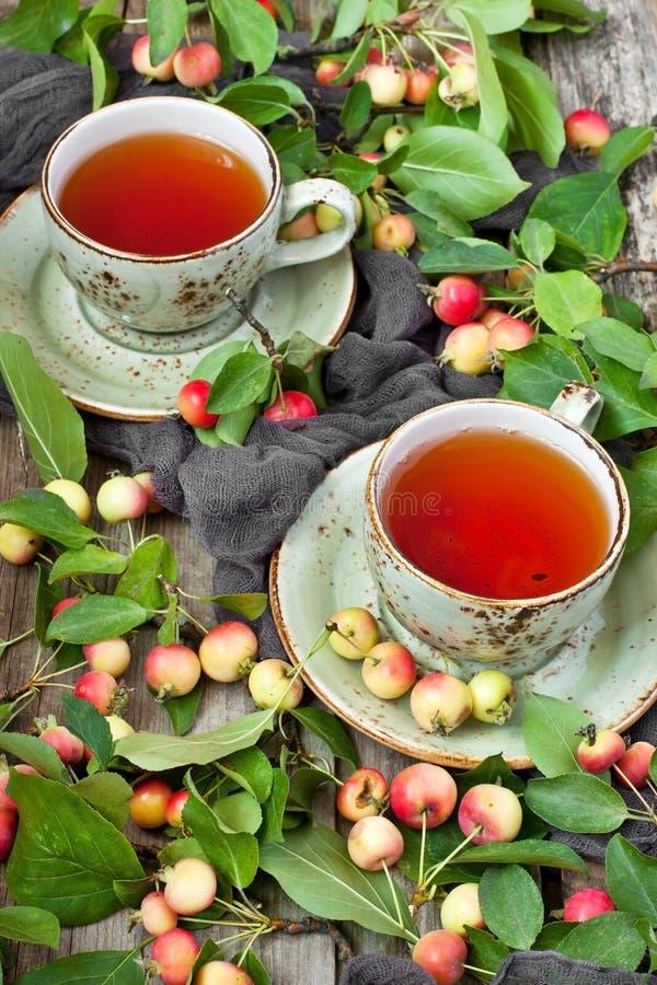 Natura morta con le mele variopinte e la tazza di tè fotografia stock