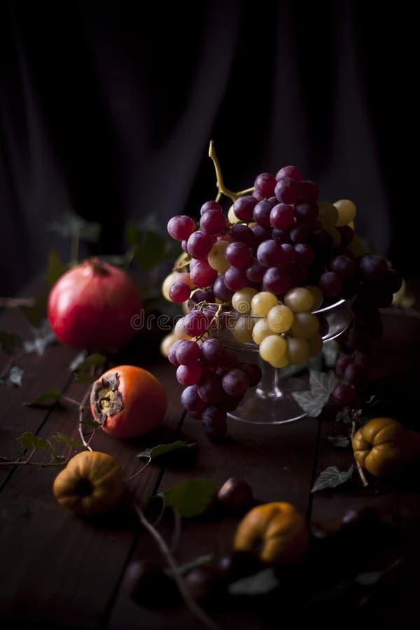 Natura morta concettuale con l'uva, il cachi ed il melograno fotografia stock libera da diritti