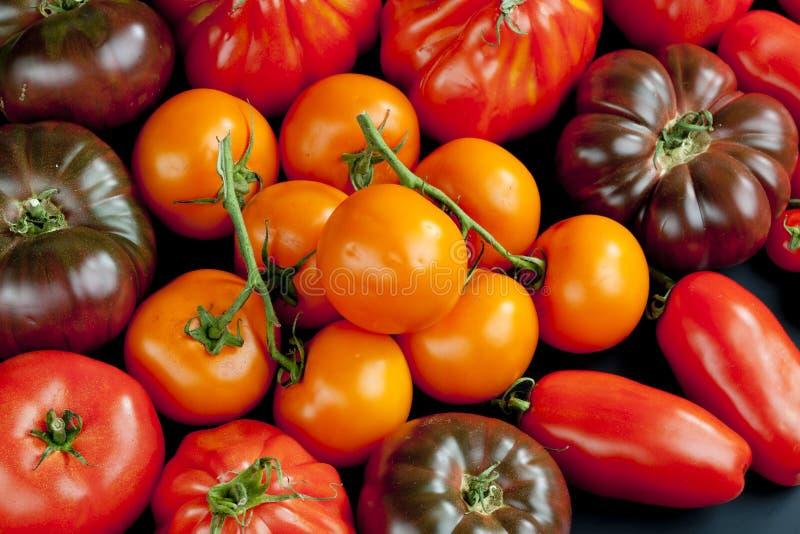 Natura morta dei pomodori immagini stock