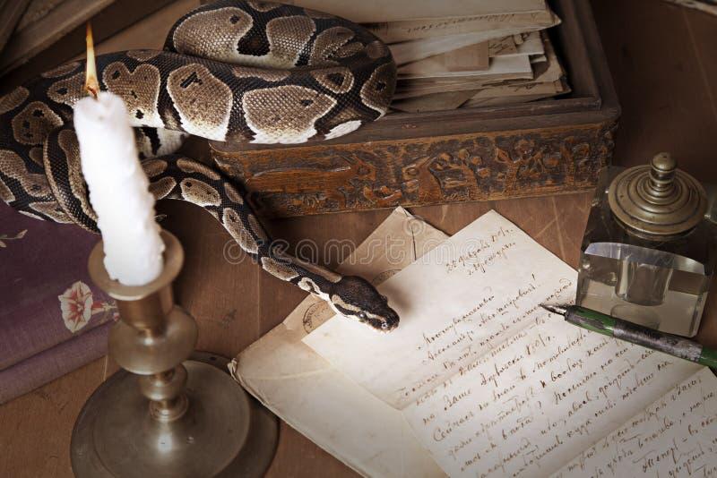 Natura morta dell'annata con il serpente e la candela fotografia stock libera da diritti