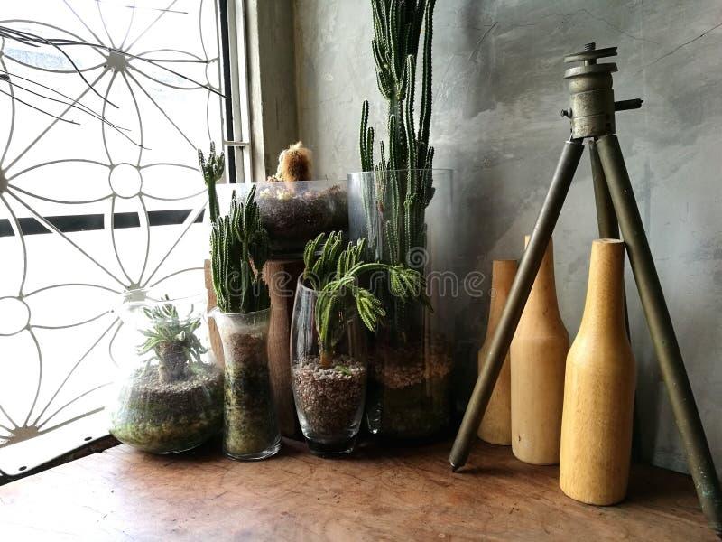 Natura morta della finestra, cactus, bottiglie fotografia stock
