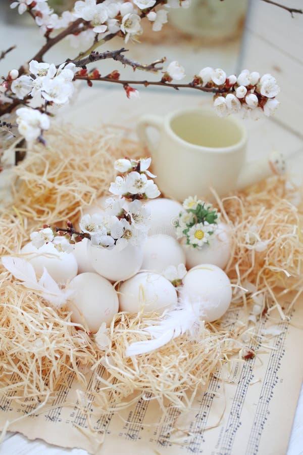 Natura morta delle uova di Pasqua fotografia stock
