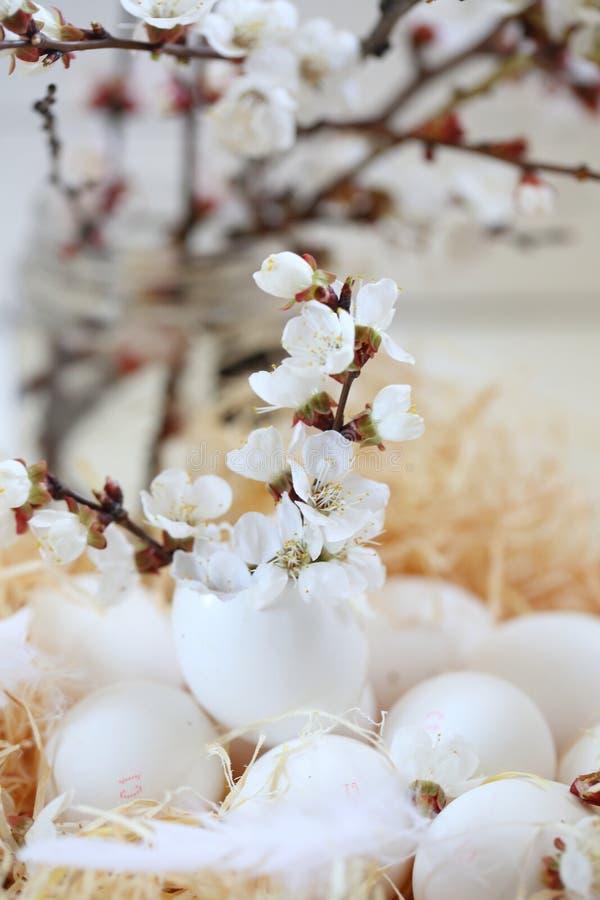 Natura morta delle uova di Pasqua fotografia stock libera da diritti