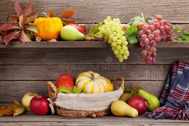 Natura morta di autunno con le zucche ed i frutti fotografia stock libera da diritti