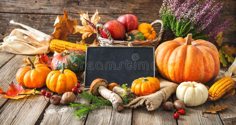 Natura morta di autunno con le zucche, le pannocchie, i frutti e le foglie immagine stock