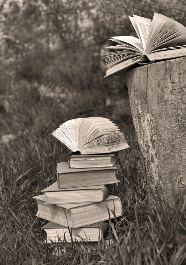 Natura morta monocromatica con il mucchio dei libri immagini stock libere da diritti