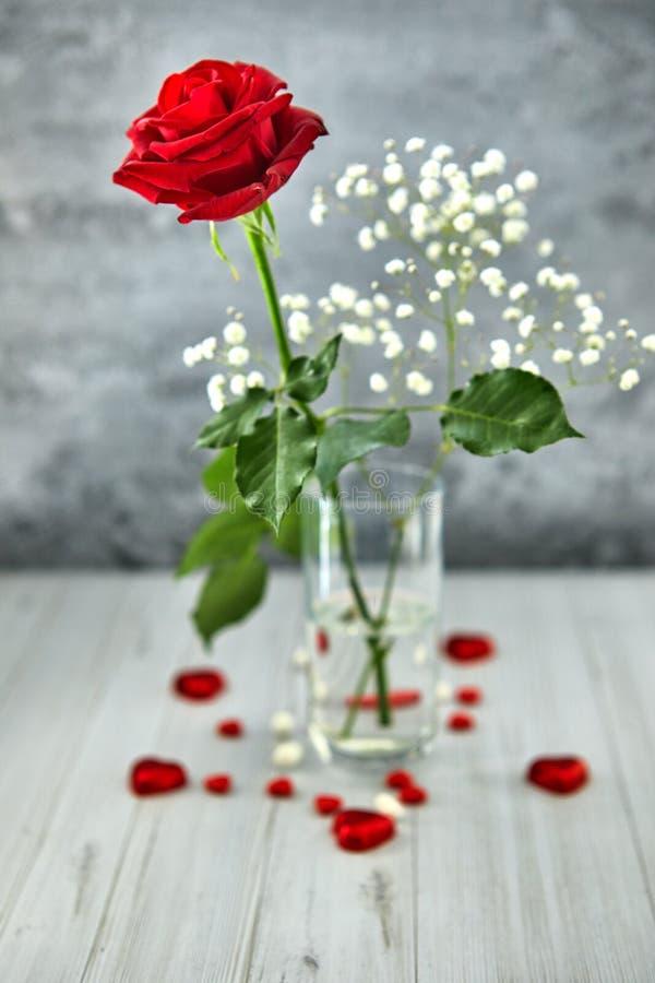 Natura morta romantica, rosa rossa, cioccolato sotto forma dei cuori su un fondo leggero Valentine& x27; concetto di giorno di s fotografie stock libere da diritti