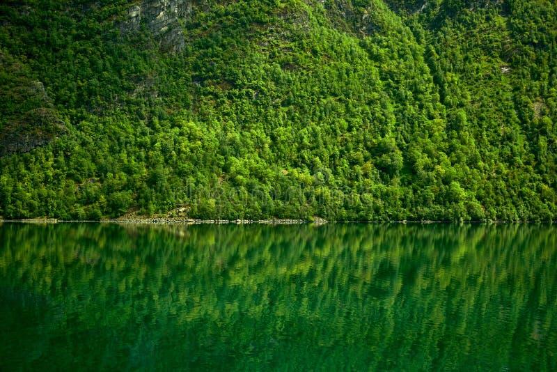 natura norvegese di viaggio del fiordo in nave da crociera immagini stock libere da diritti