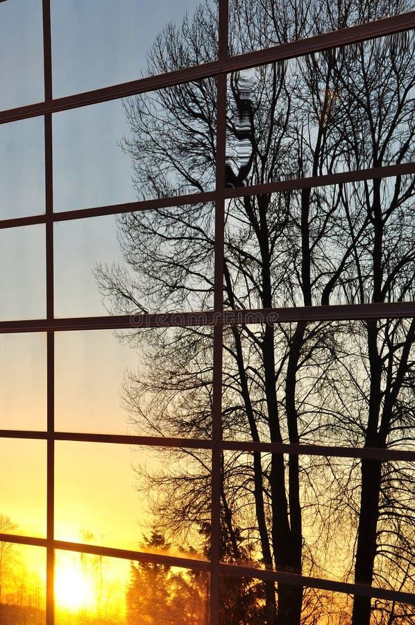 natura odbija widok okno fotografia stock