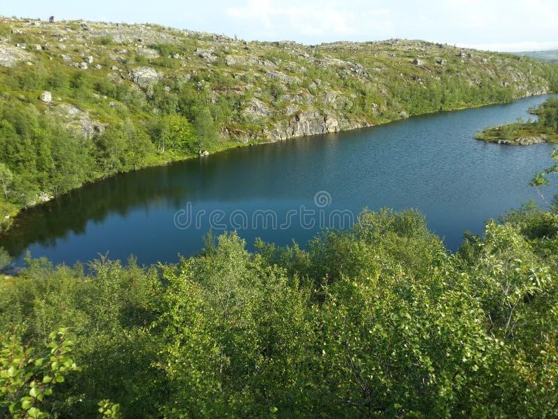 Natura Północny lato zdjęcia royalty free
