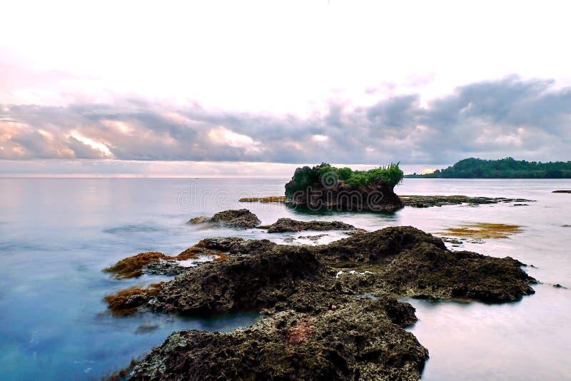 Natura Papua - nowa gwinea obraz stock