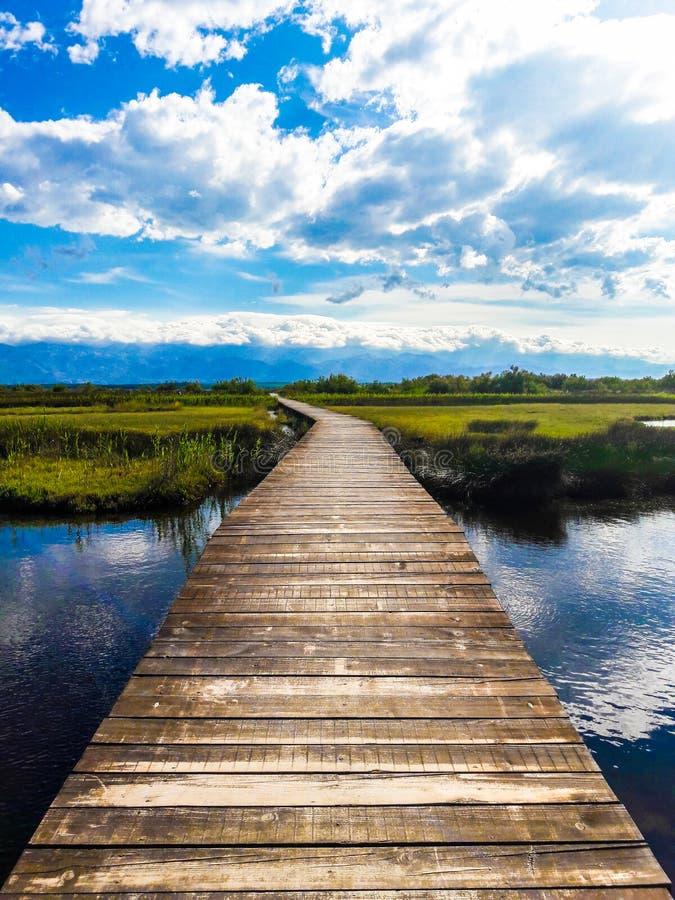Natura & parco fotografia stock libera da diritti