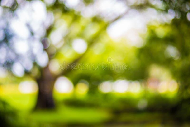 Natura parka tła bokeh plama zdjęcie stock