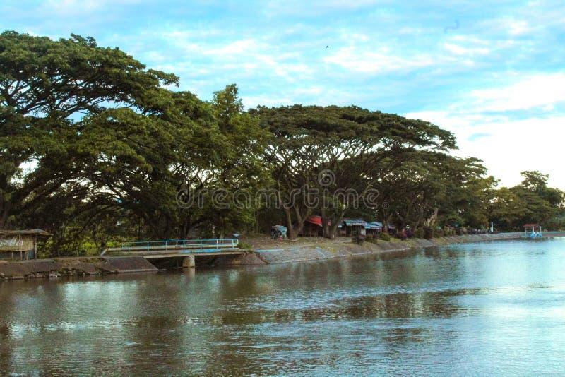 Natura - piękny krajobraz w jeziorze fotografia royalty free