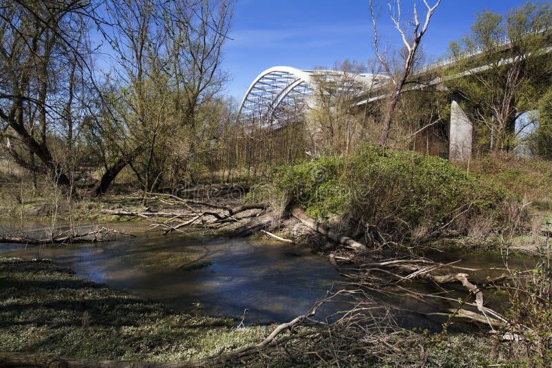 Download Natura pod mostem obraz stock. Obraz złożonej z holandie - 53781147