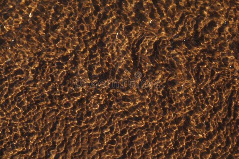 Natura projekt odbicie na natura wzoru piasku pod wod? morsk? Piasek pod wod? w naturze jako t?o obraz royalty free