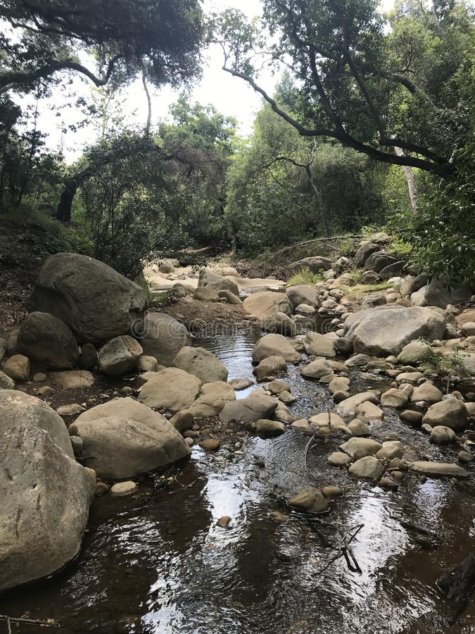 Natura robił swój swój zen ogródowi obraz royalty free