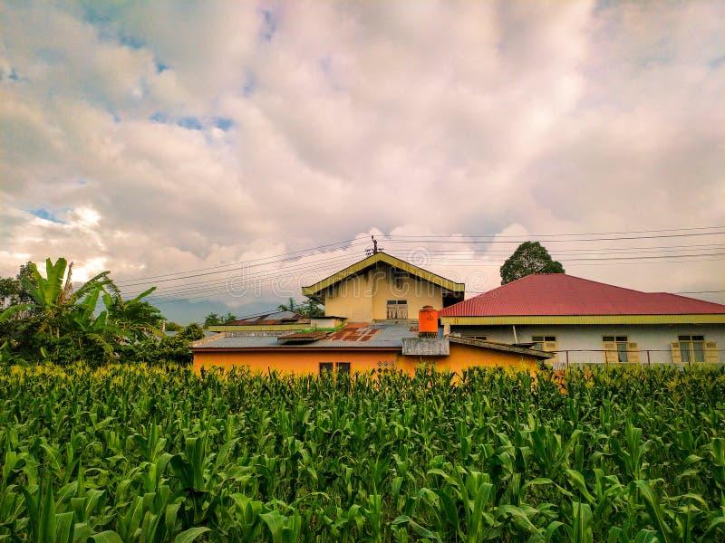 natura rurale con giardino e nuvolosità del cielo fotografie stock