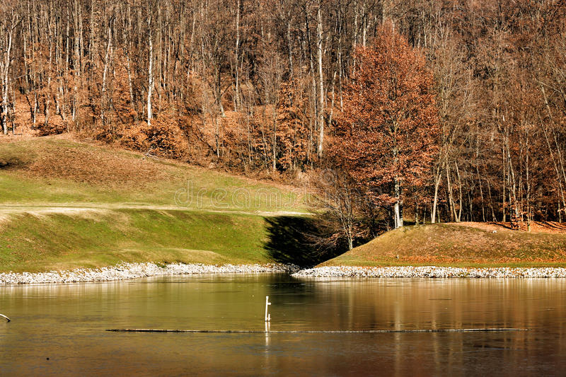 Natura in Serbia immagini stock