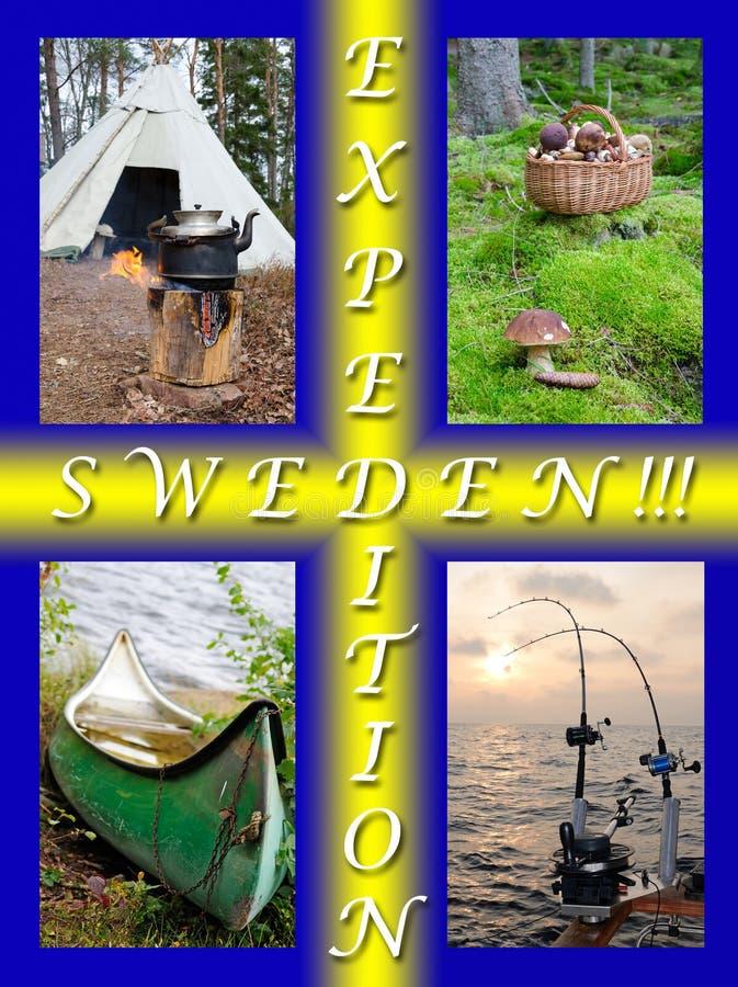 Natura svedese per la gente attiva - concetto del collage fotografie stock libere da diritti
