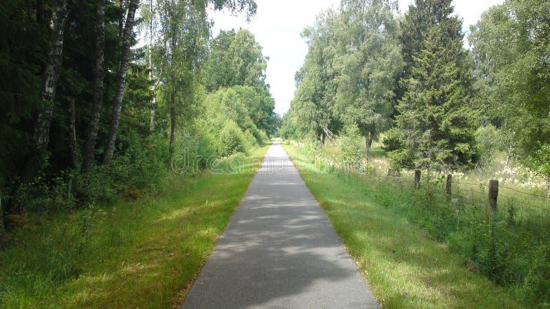 Natura sweden8 zdjęcia royalty free