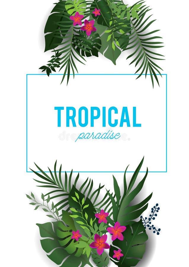Download Natura tropicale isolata illustrazione vettoriale. Illustrazione di arte - 117978138