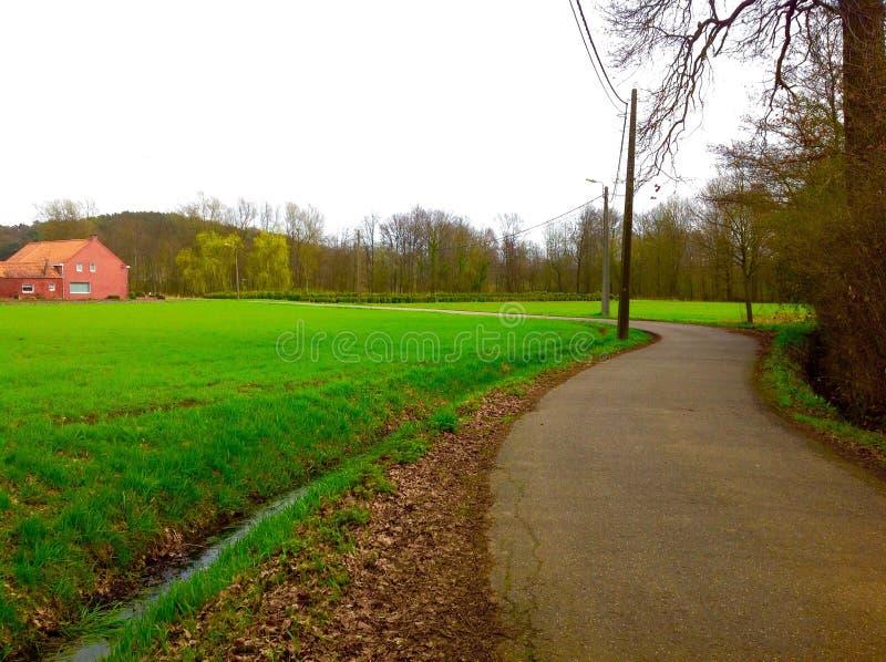 Natura verde lungo la strada e la casa europea fotografie stock libere da diritti
