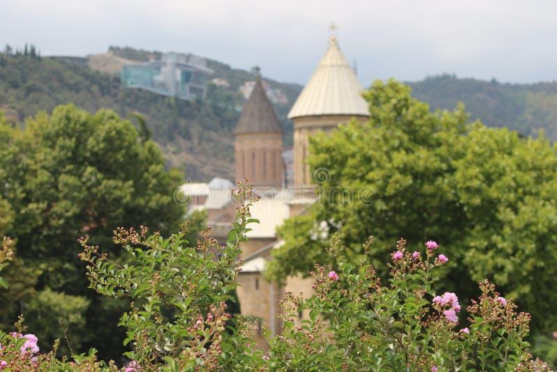Natura vicino alle chiese nella città di Tbilisi fotografia stock