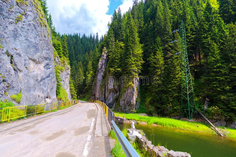 Natura w Bucegi górach, Rumunia obrazy stock