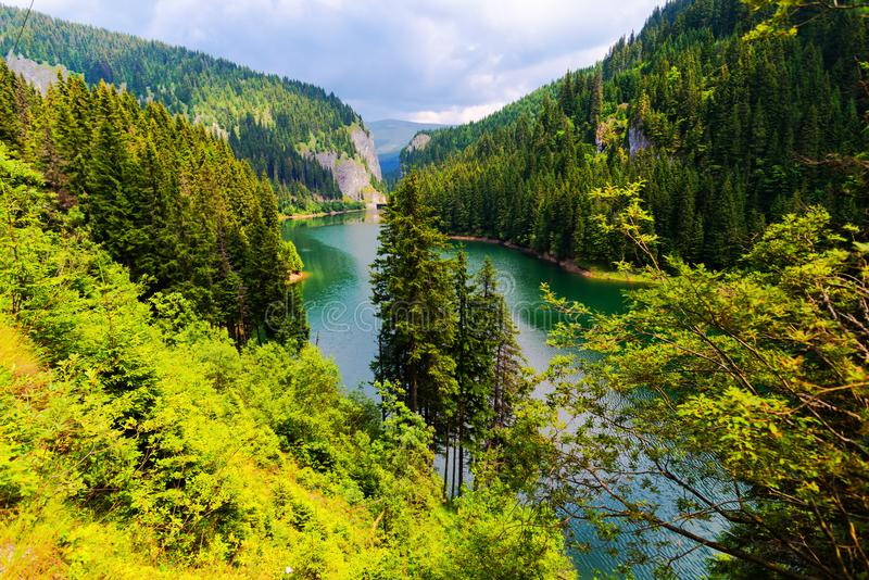 Natura w Bucegi górach, Rumunia fotografia royalty free