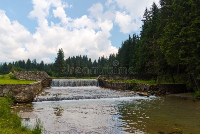 Natura w Bucegi górach, Rumunia obraz stock