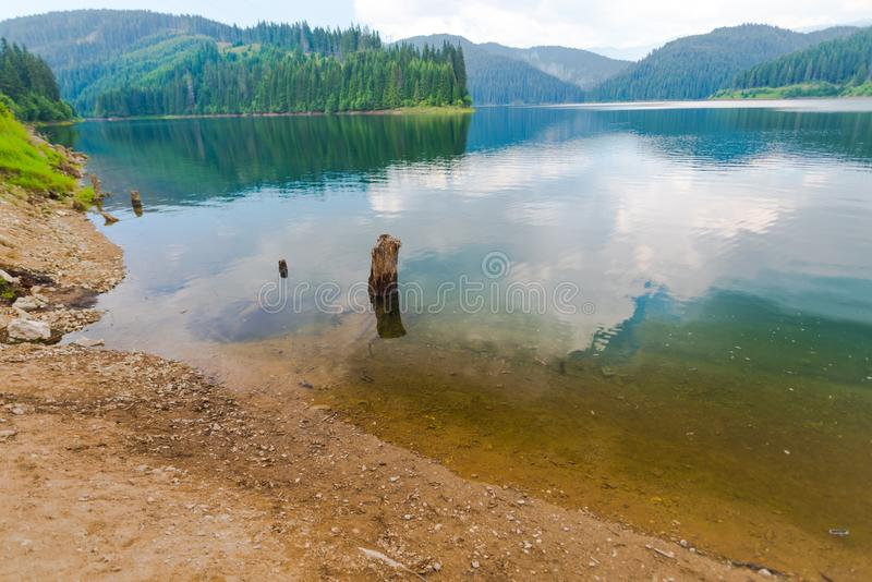 Natura w Bucegi górach, Rumunia zdjęcie royalty free