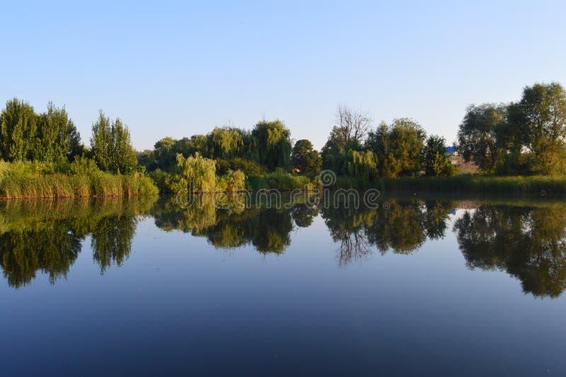 Natura w Poltava regionie fotografia stock