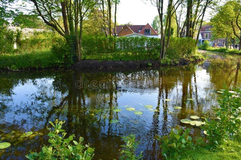 Natura widok rzeka i drzewa obraz royalty free