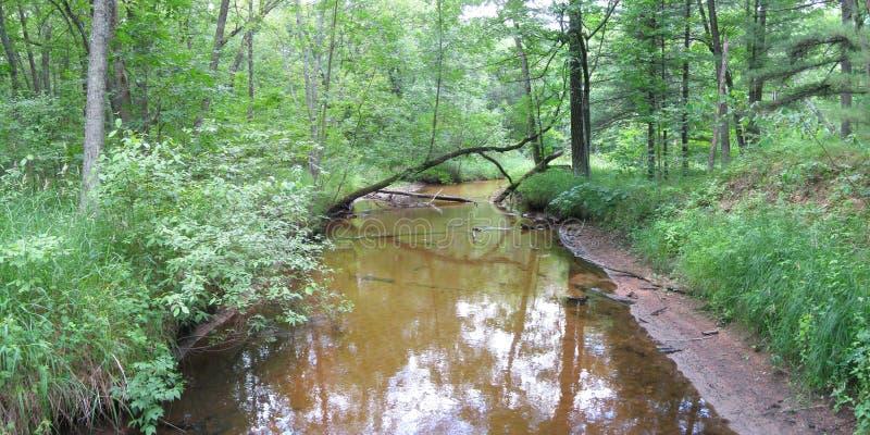 natura Wisconsin obrazy royalty free