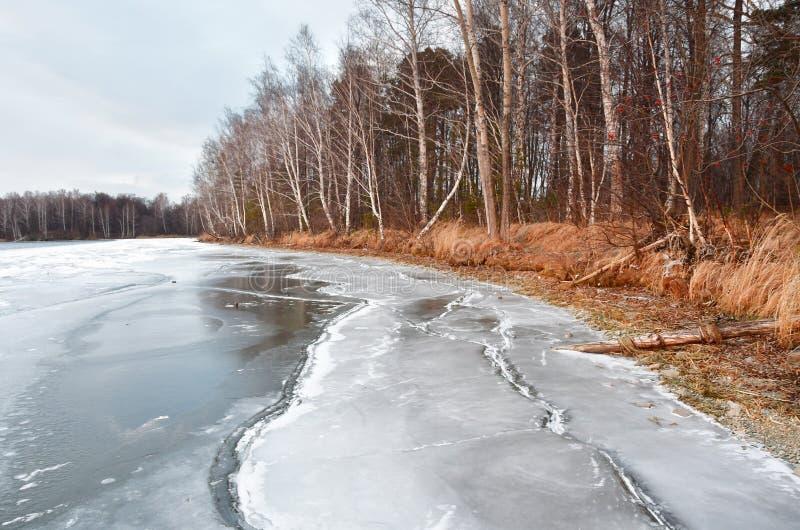 Natura zabytek - jeziorny Uvildy w Listopadzie w chmurnym dniu, Południowy Ural, Chelyabinsk region, Rosja obrazy royalty free