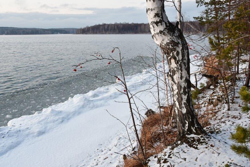 Natura zabytek - jeziorny Uvildy w Listopadzie w chmurnym dniu, Południowy Ural, Chelyabinsk region, Rosja zdjęcia stock